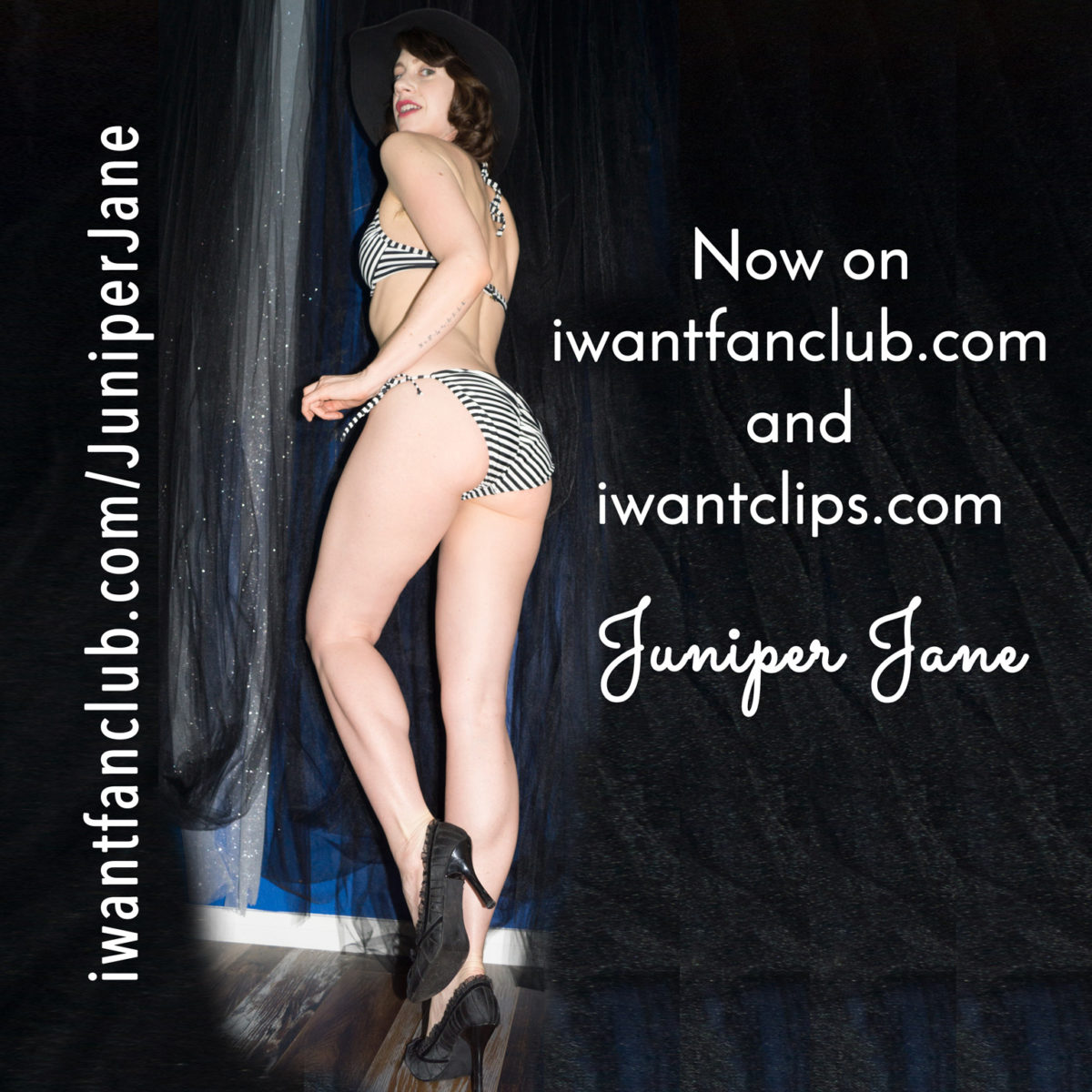 Juniper Jane's NEW CLIP STORE AND FAN CLUB!